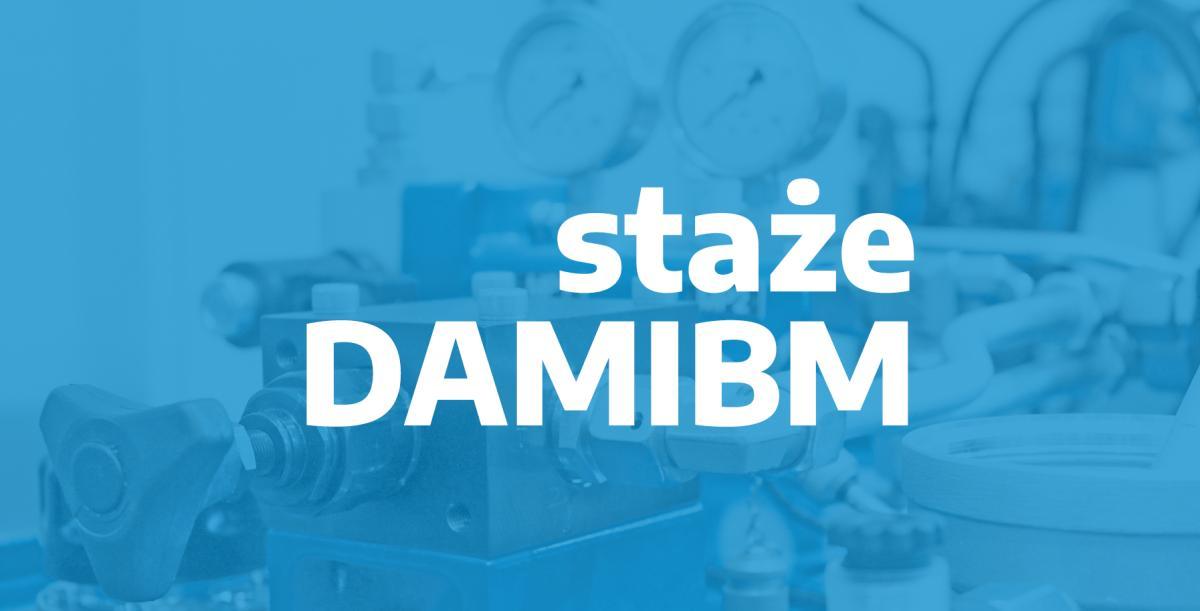 Realizujemy projekt stażów DAMIBM z Politechniką Śląską
